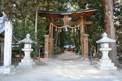 2015sumiyoshi1.JPG