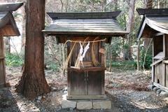 2015sumiyoshi5.JPG