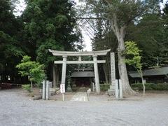 yatsuki-tsutsukowake1.JPG