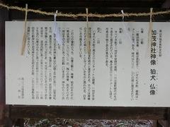 151229kamo16.JPG