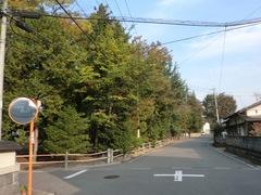 2011.10.11.shigeyanagi2.JPG