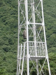 2012.08.14.takigami5.JPG