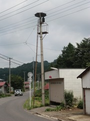 2012.08.21.hatajuku1.JPG
