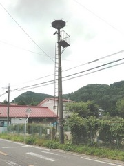 2012.08.21.hatajuku2.JPG