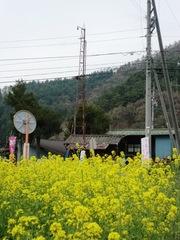 20120430nakahira6.JPG