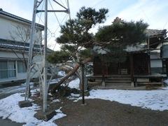 2013.01.13.honmura3.JPG