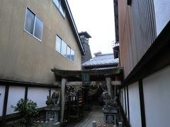 2013.02.24.yamazakura8.JPG