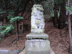 2013.03.10.namiyanagi12.JPG