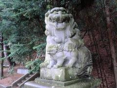 2013.03.10.namiyanagi7.JPG