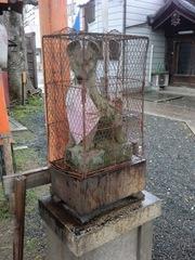 2013.04.06.shimomitama14.JPG