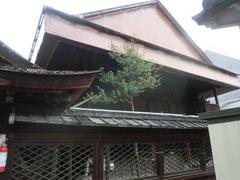 2013.04.06.shimomitama7.JPG