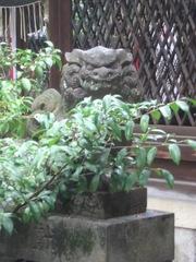 2013.04.06.shimomitama8.JPG