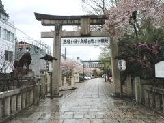 2013.04.06.yasuikonpira1.JPG