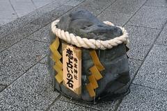2013.04.07.jishu5.JPG
