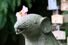 2013.04.07.ootoyo22.JPG