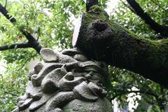 2013.06.16.hikawa10.JPG