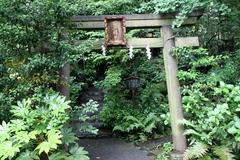 2013.06.16.hikawa19.JPG