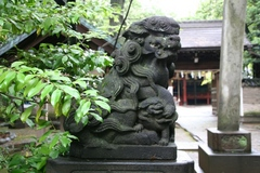 2013.06.16.hikawa37.JPG