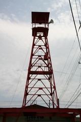 2013.08.14.okkonoki6.JPG