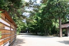 2013.08.14.saruka11.JPG