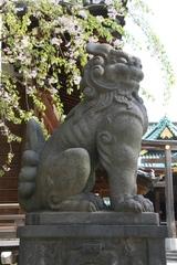 2014.04.08.ushijima6.JPG