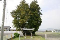 2014.05.03.miwa1.JPG