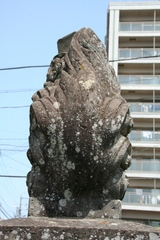 2014.05.10.fujikonpira14.JPG