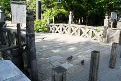 2014.05.27.yohashira3.JPG