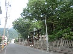 20150616tsumashina1.JPG