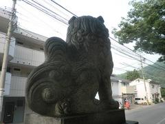 20150616tsumashina32.JPG