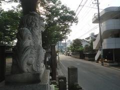 20150616tsumashina34.JPG