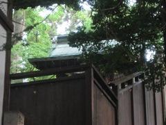 20150616tsumashina4.JPG