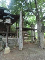 20150616tsumashina6.JPG