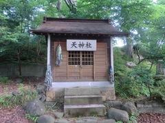 20150616tsumashina9.JPG