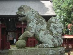 yatsuki-tsutsukowake5.JPG